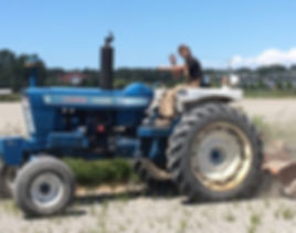 Old tractor Ford 7000