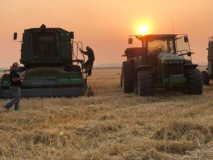 Shift change for the barle harvest.