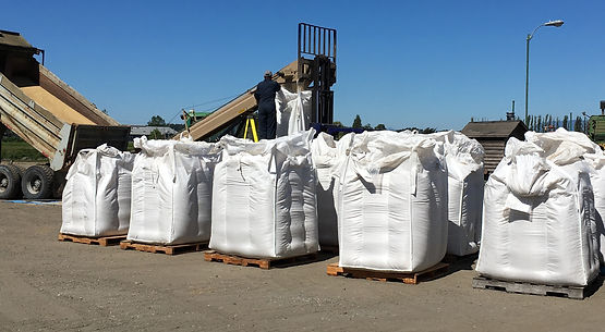 Mulox totes full of barley that will soon be malted.