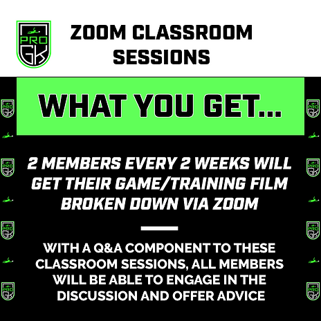zoom classroom (what you get).png