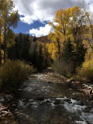 Autumn at Castle Creek (Bucksbaum Campus)