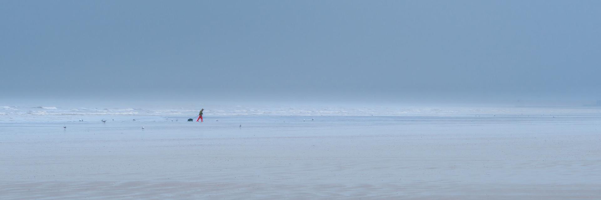Lone Fisherman at Dawn