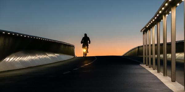 Rider at Dawn