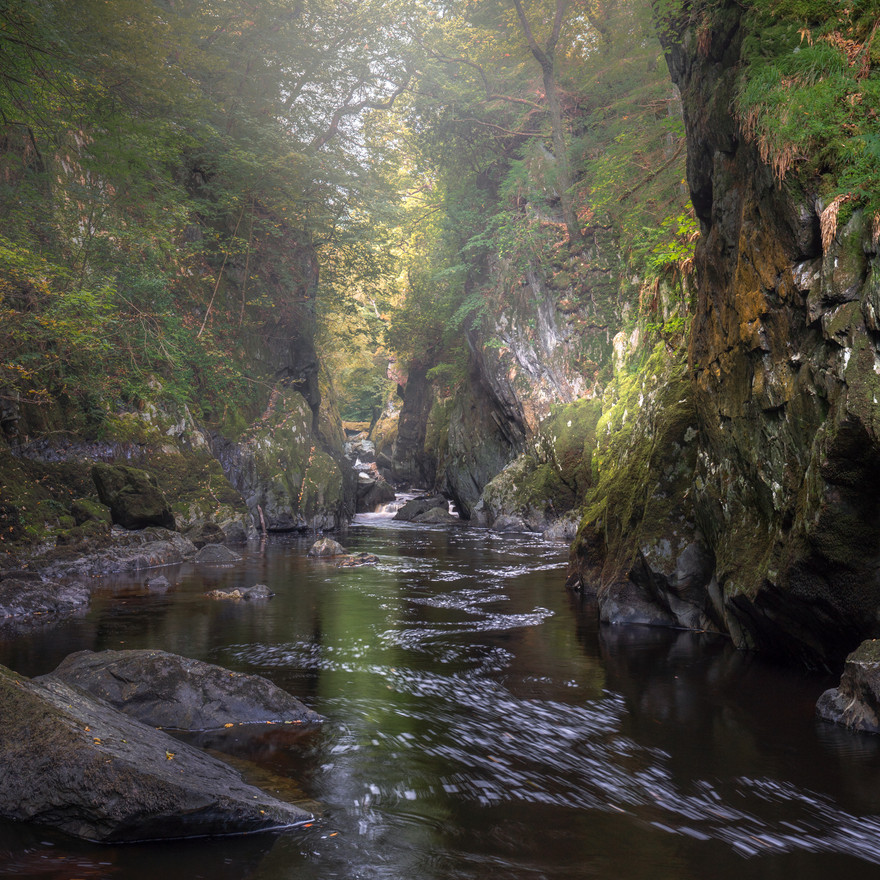 Misty Fairy Glen