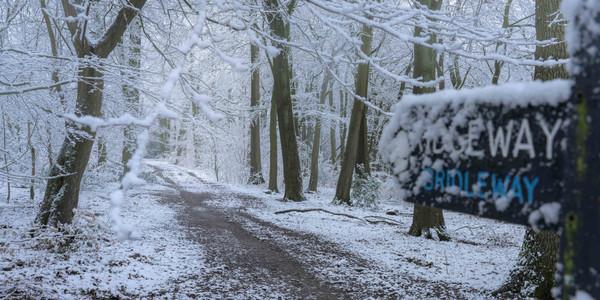 Ridgeway - through the snow