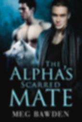 The Alpha's Scarred Mate eBook.jpg