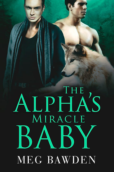The Alpha's Miracle Baby eBook.jpg