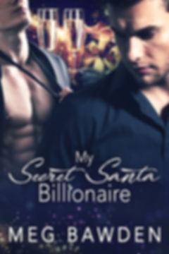 My Secret Santa Billionaire.jpg