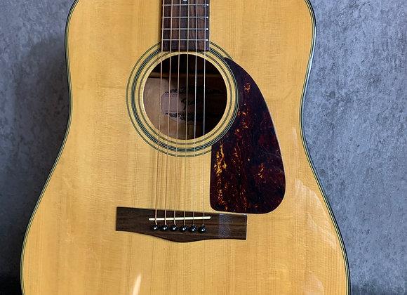 Fender F210S