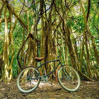 Coba Bike ride.jpg