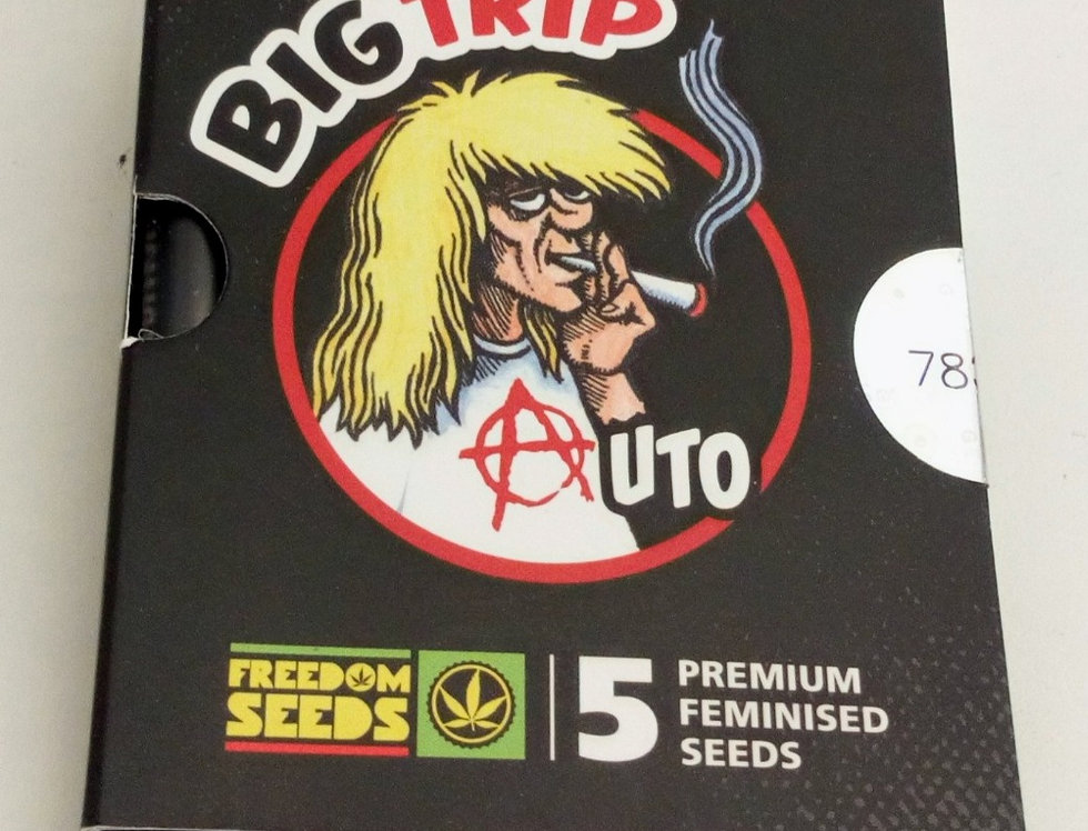 Big Trip auto seeds/5 pack