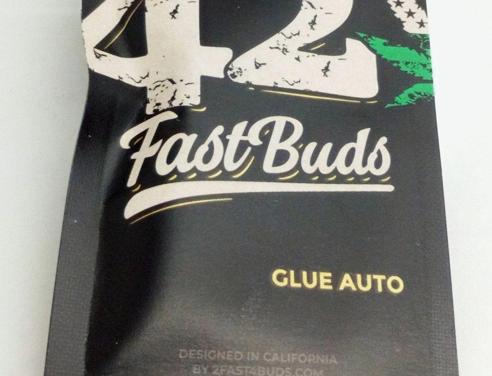 Glue auto seeds/5 pack