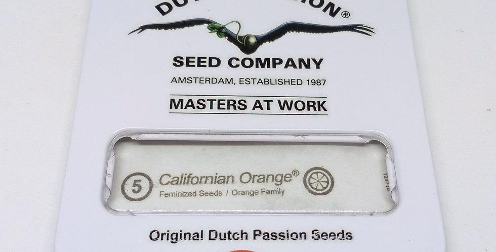 California orange 5 pack