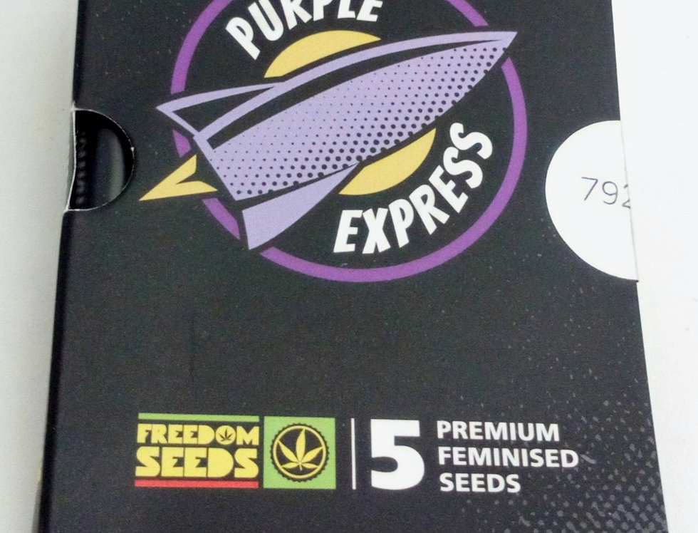 Purple Express auto seeds/5 pack