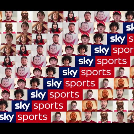 Sky Sport Perimeter Boards