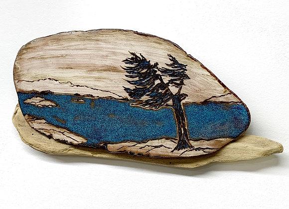 Wall Art - Windblown Pine