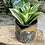 Thumbnail: Wildflower Honeycomb Pot