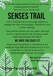 senses trail website.png