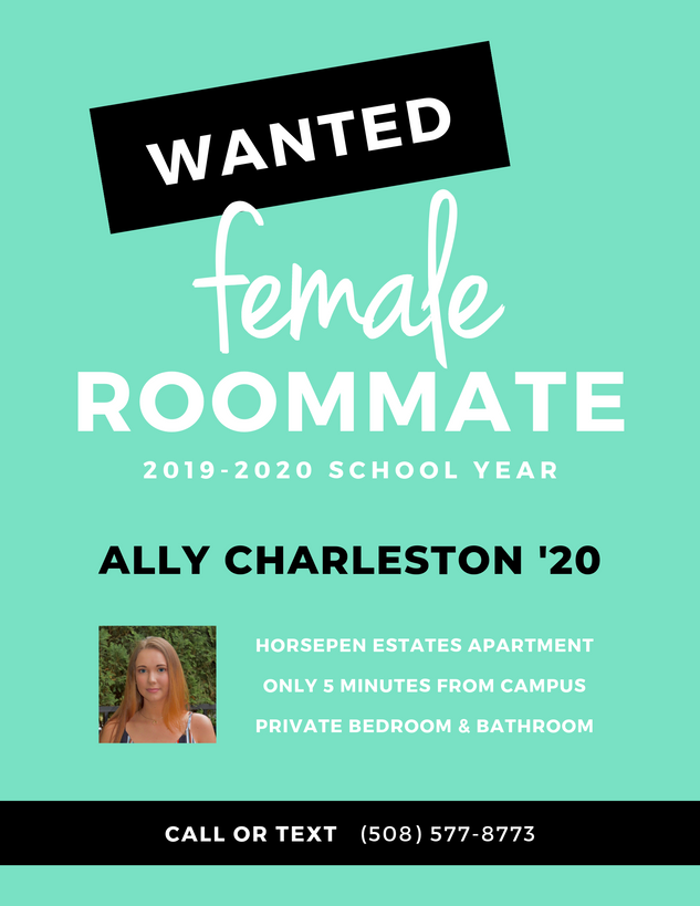 Roommate Wanted Flyer
