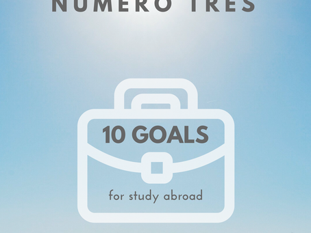 10 goals for study abroad