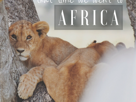 that time we went to Africa