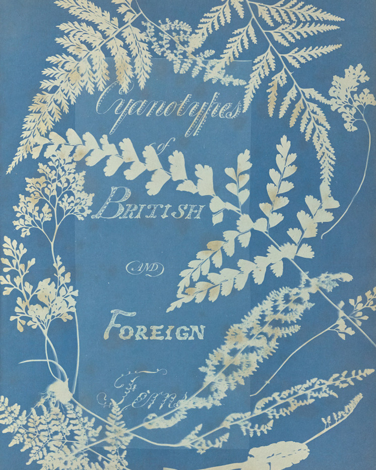 Titlepage of Cyanotypes of British and Foreign Ferns