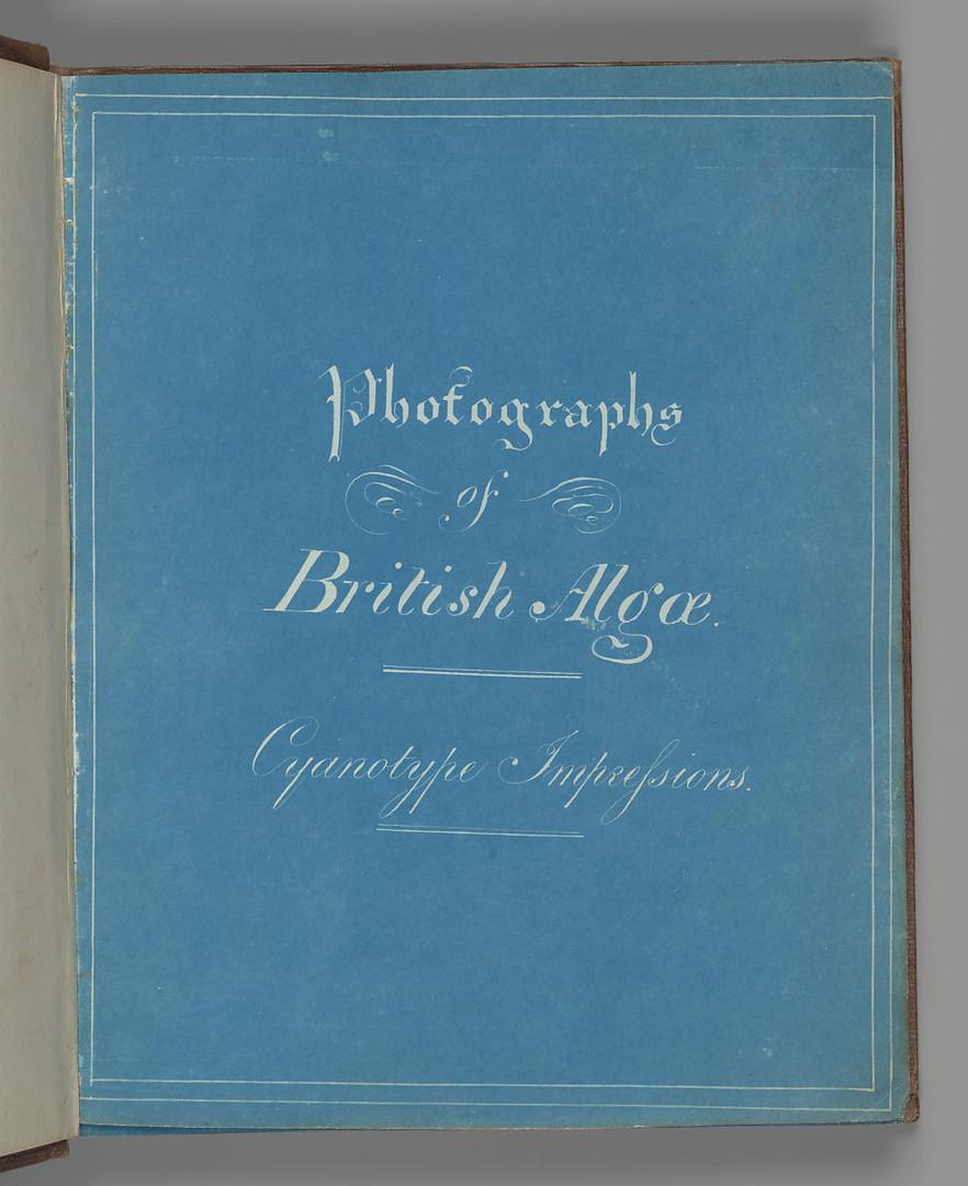 Titlepage of Photographys of British Algae: Cyanotype Impressions