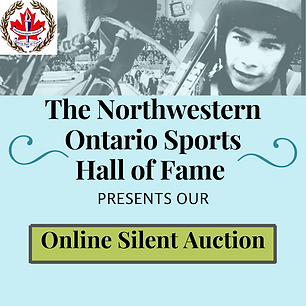 2020 Online Silent Auction