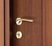Hard Wood Doors.jpg
