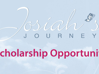 Josiah's Journey Scholarship: 20th Biennial InternationalPerinatal Bereavement Conference
