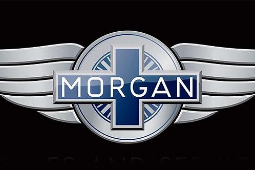 Morgan L.E.D. Display Light