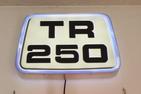 Triumph TR250 Display Light