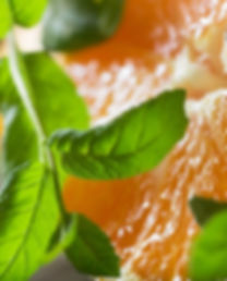 watermint-and-clementine-fragrance-oil-n
