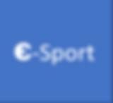 e-sport.PNG