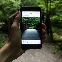 Social+media+2.jpeg
