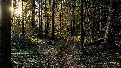 nastol.com.ua-271599 (1).jpg