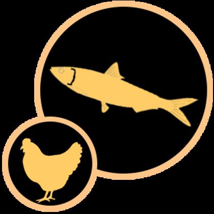 Sardine & Chicken 200gm