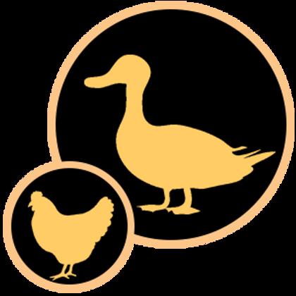 Duck & Chicken 200gm