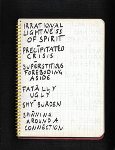 IRRATIONAL LIGHTNESS OF SPIRIT