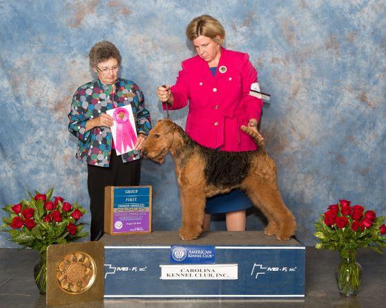 Terriers - Group 1 - OH-web.jpg
