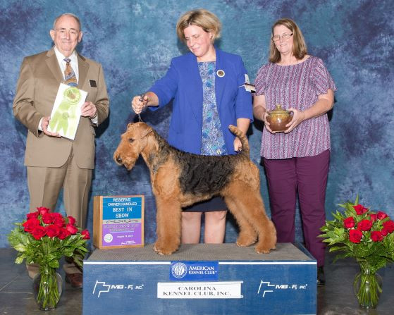 Reserve Best In Show - OH-web.jpg