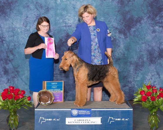 Terrier - Group 1 - OH-web.jpg