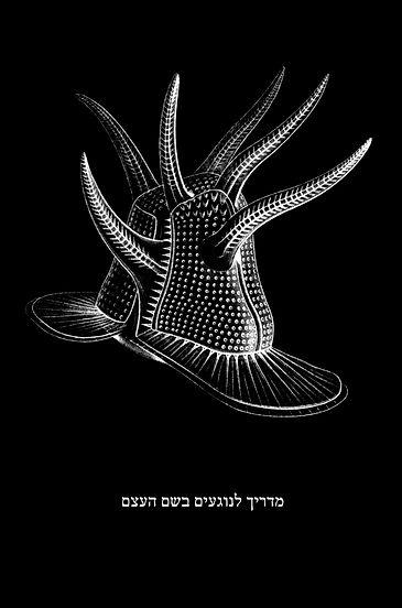 מרחב ישורון מדריך לנוגעים בשם העצם , הלל רומן