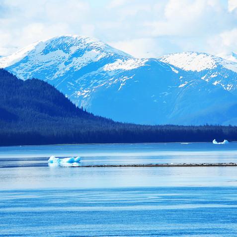 glacier bay 9998.jpg