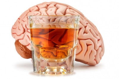 Could Your Brain be Wired for Alcoholism?