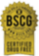 SCS%2520LOGOS_edited_edited.png