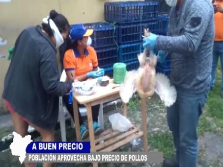 A BUEN PRECIO LA POBLACIÓN APROVECHA BAJOS COSTOS DEL POLLO