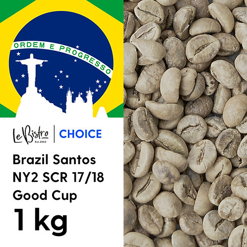 Brazil Santos NY2 SCR 17/18 Good Cup