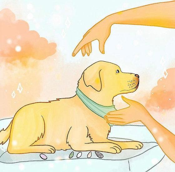 Sessão de terapia integrativa animal
