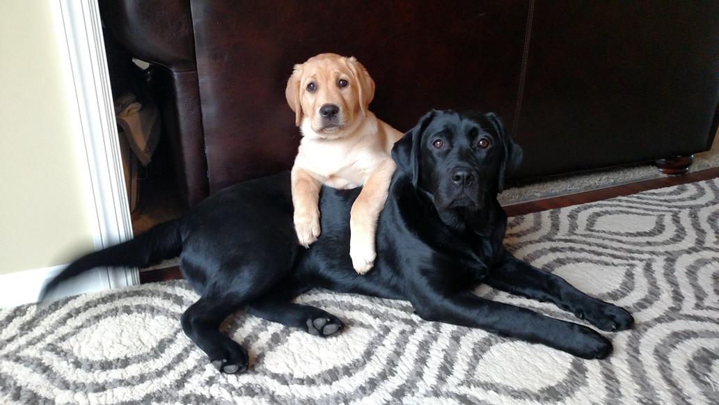 Shelby&Aubrey.jpg